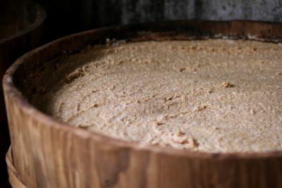 味噌の発酵のしくみ