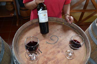 世界、発酵食品、ワイン