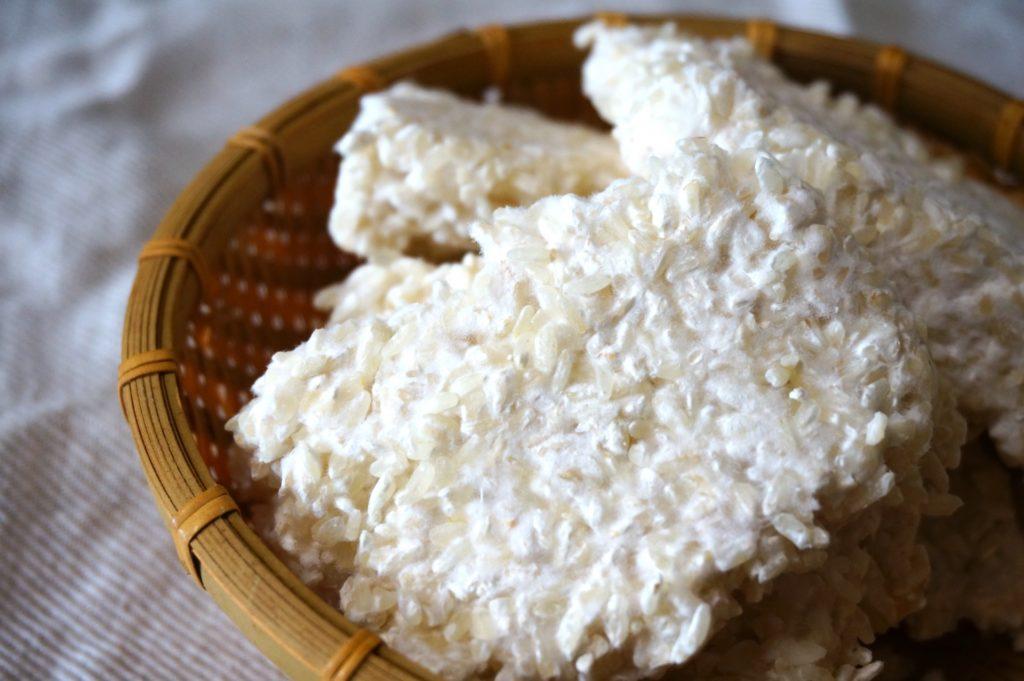 Rice Koji, block type